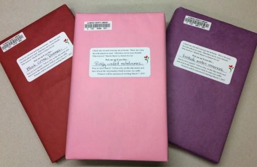 blinddatebooks2